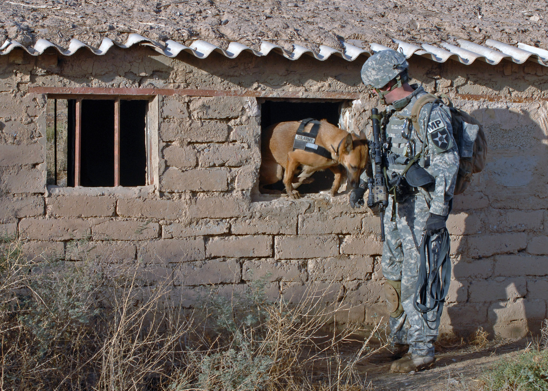 File:US Navy 071223-N-1132M-025 A Dog Handler working with the 2nd ...