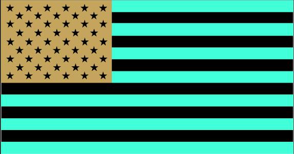 US_flag(inverted).png