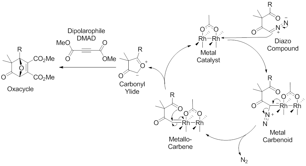 Scheme 7. Accepted Mechanism of the 1,3-Dipolar Cycloaddition Reaction Mediated by Metal Catalysis (Example Dirhodium Catalyst) of Diazocarbonyl Compounds. Modified from M. Hodgson, D.; H. Labande, A.; Muthusamy, S. In Organic Reactions; John Wiley & Sons, Inc.: 2004.