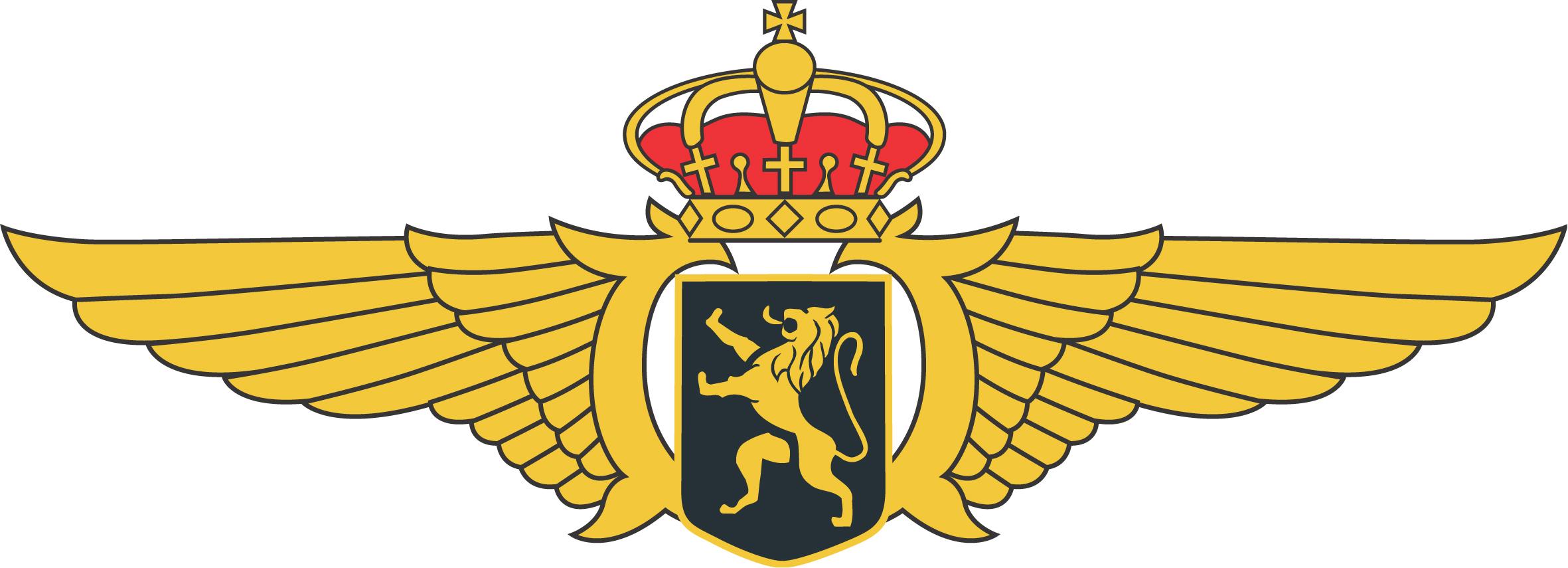 Philippe of Belgium