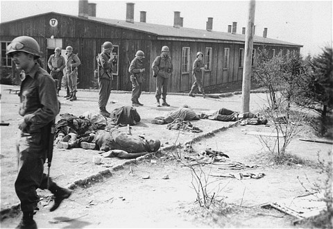 filebuchenwald ohrdruf corpses 12086jpg wikimedia commons