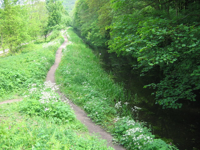 Cromford Canal - South of Whatstandwell - geograph.org.uk - 179263