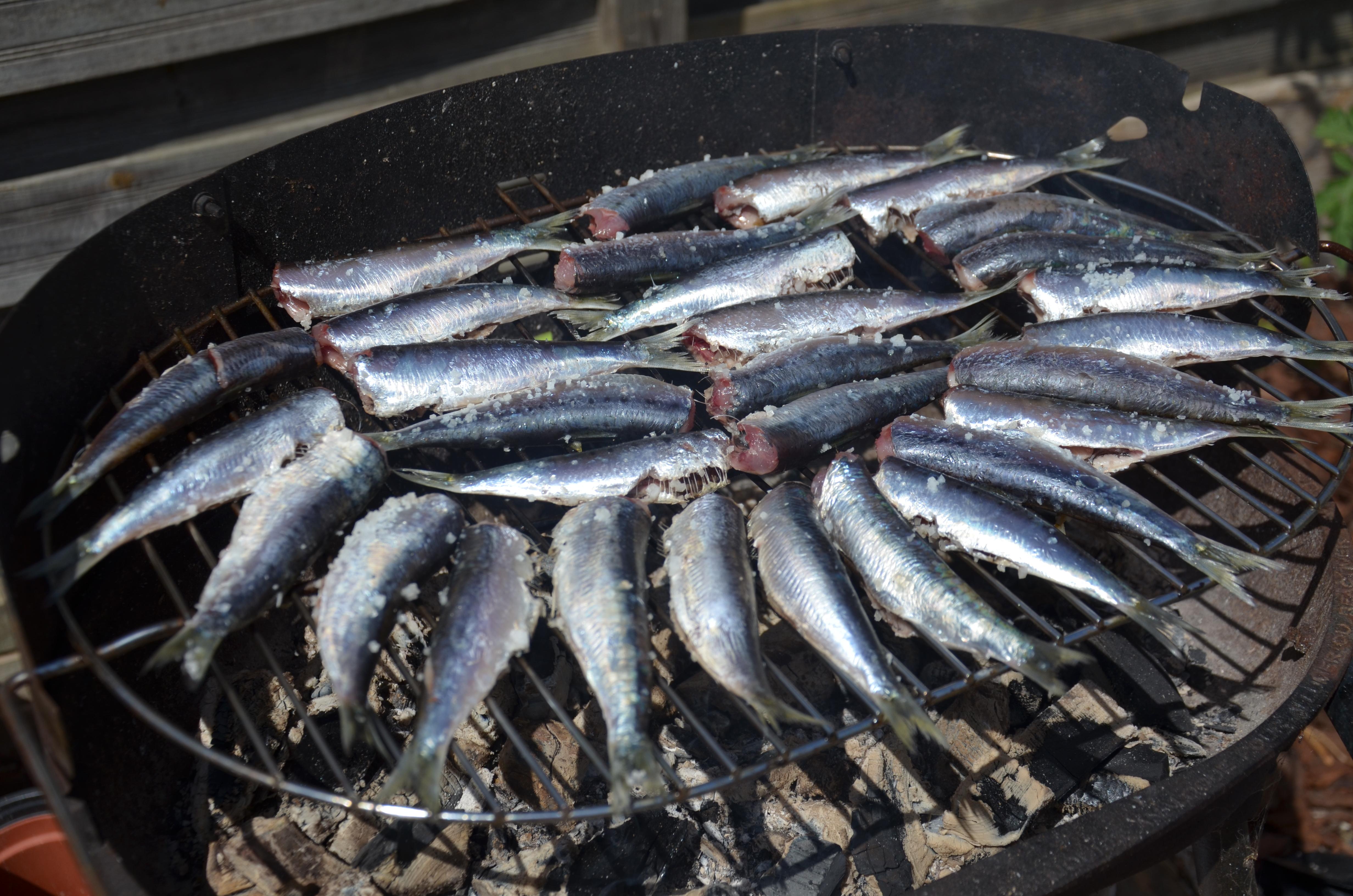 File cuisson de sardines au wikimedia commons - Sardine grillee au barbecue ...