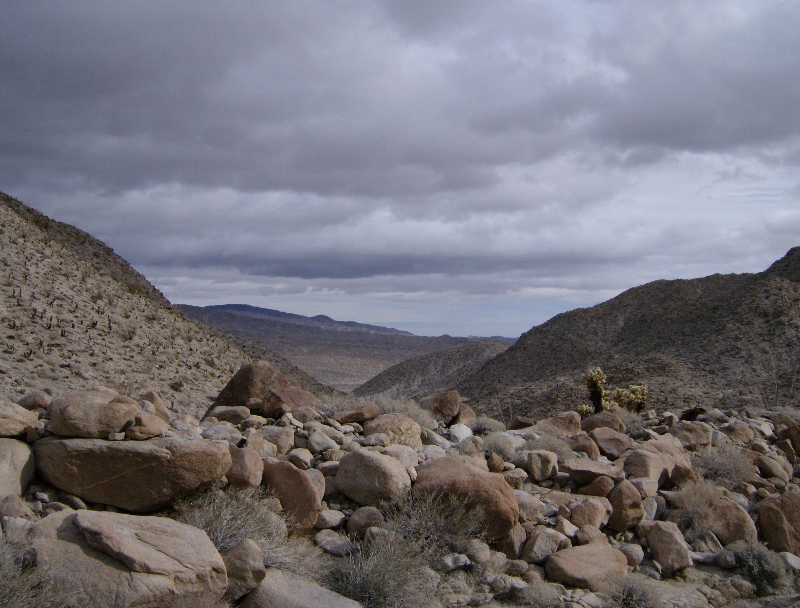 Geography of the colorado desert for Desert landscape