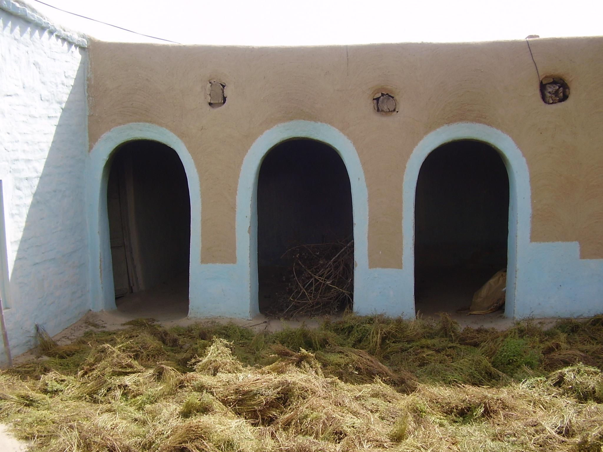 Description Drying Crop in rural Punjabi home.JPG
