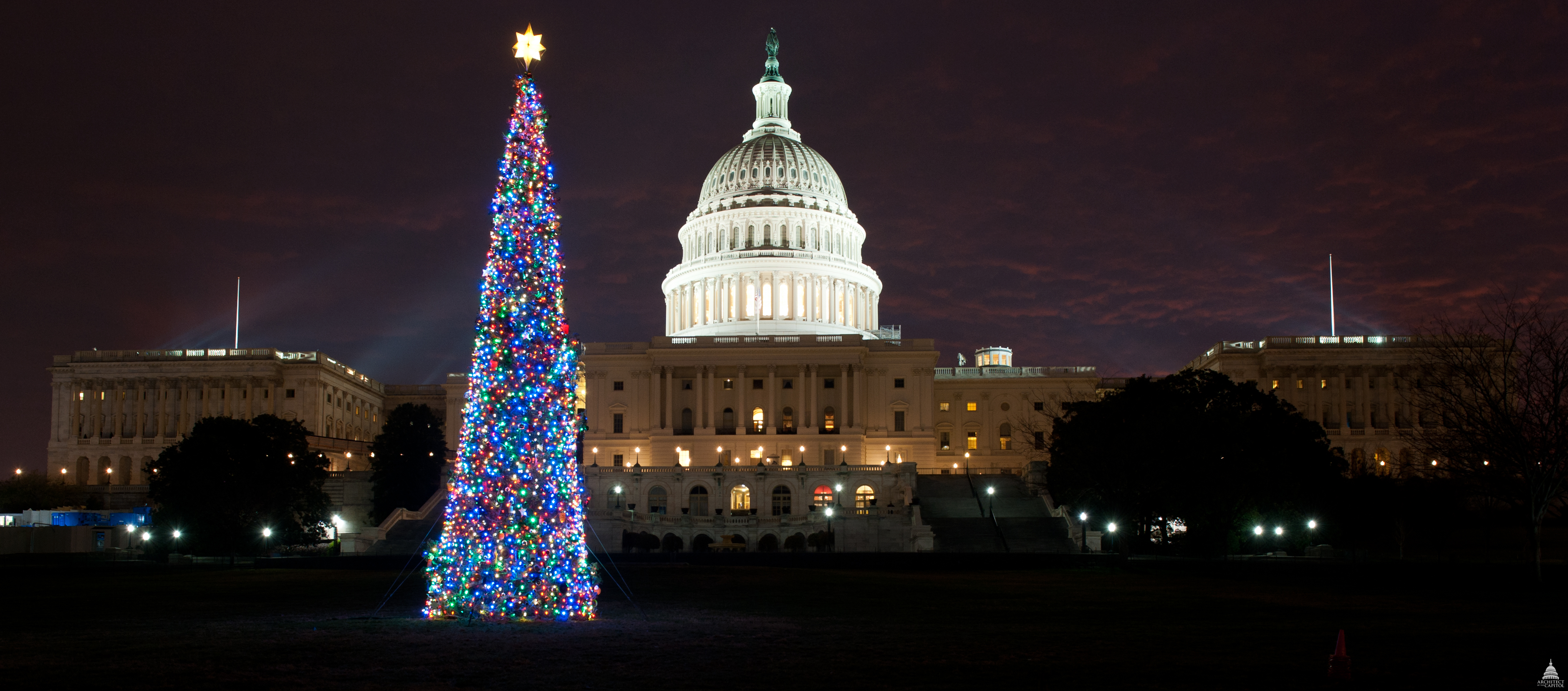 File:Flickr - USCapitol - The 2011 Capitol Christmas Tree ...