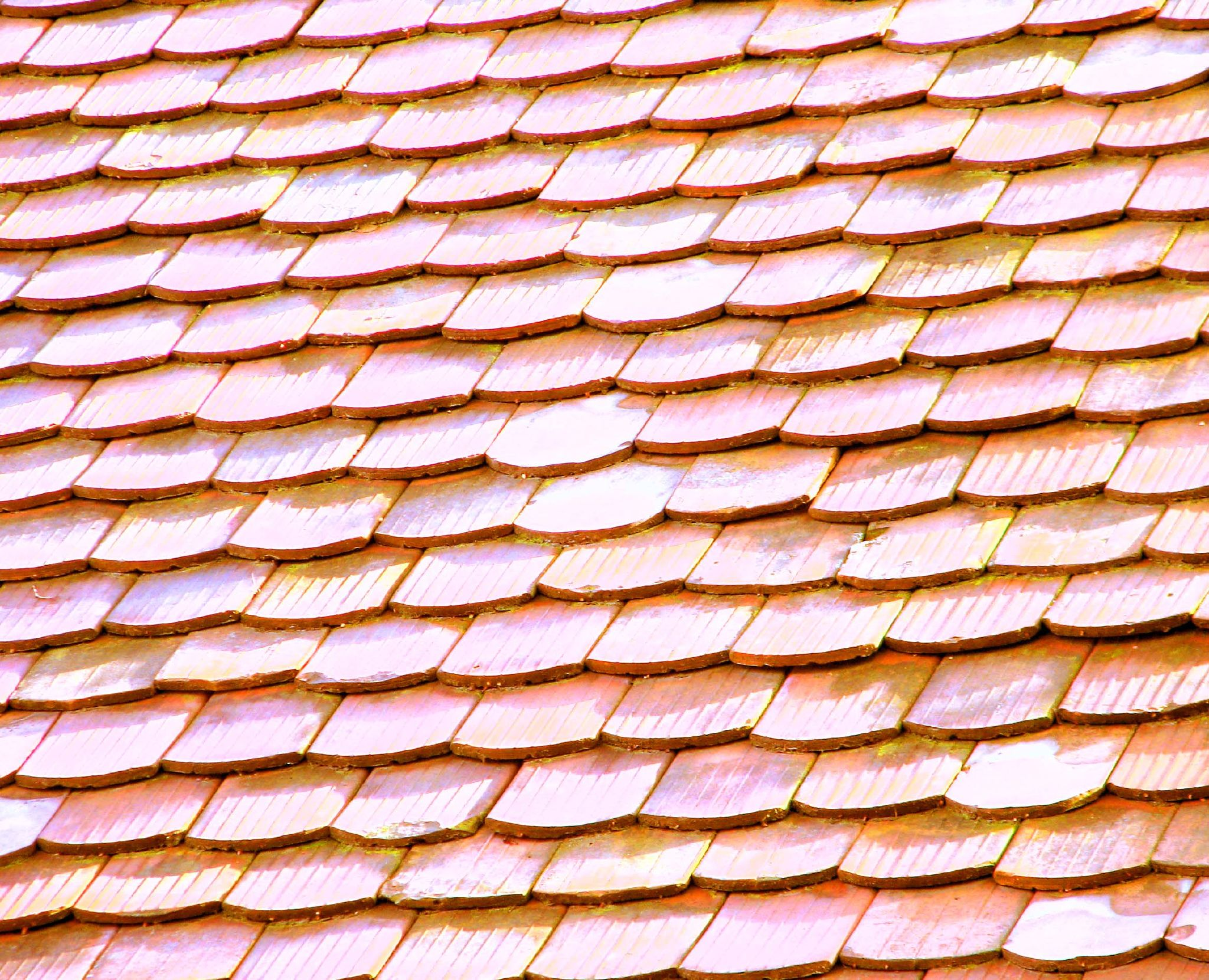 Cost to install shingle roof estimates and prices at fixr for Materials needed for roofing