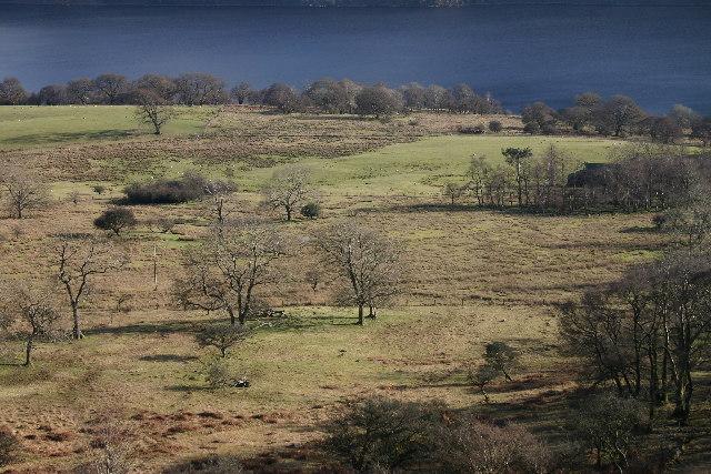 Glencoyne Park, Ullswater - geograph.org.uk - 119315