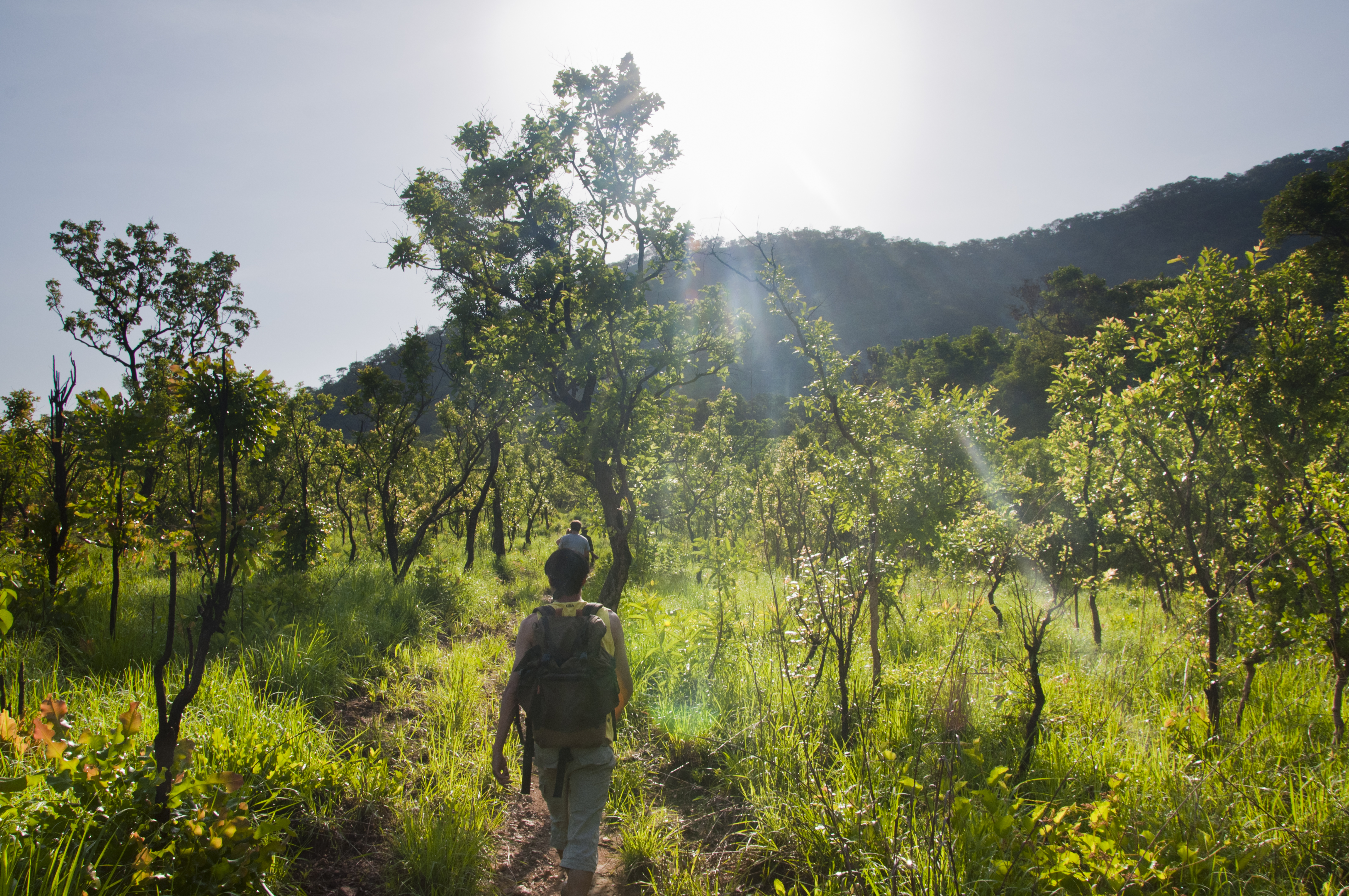 Image result for kyabobo national park