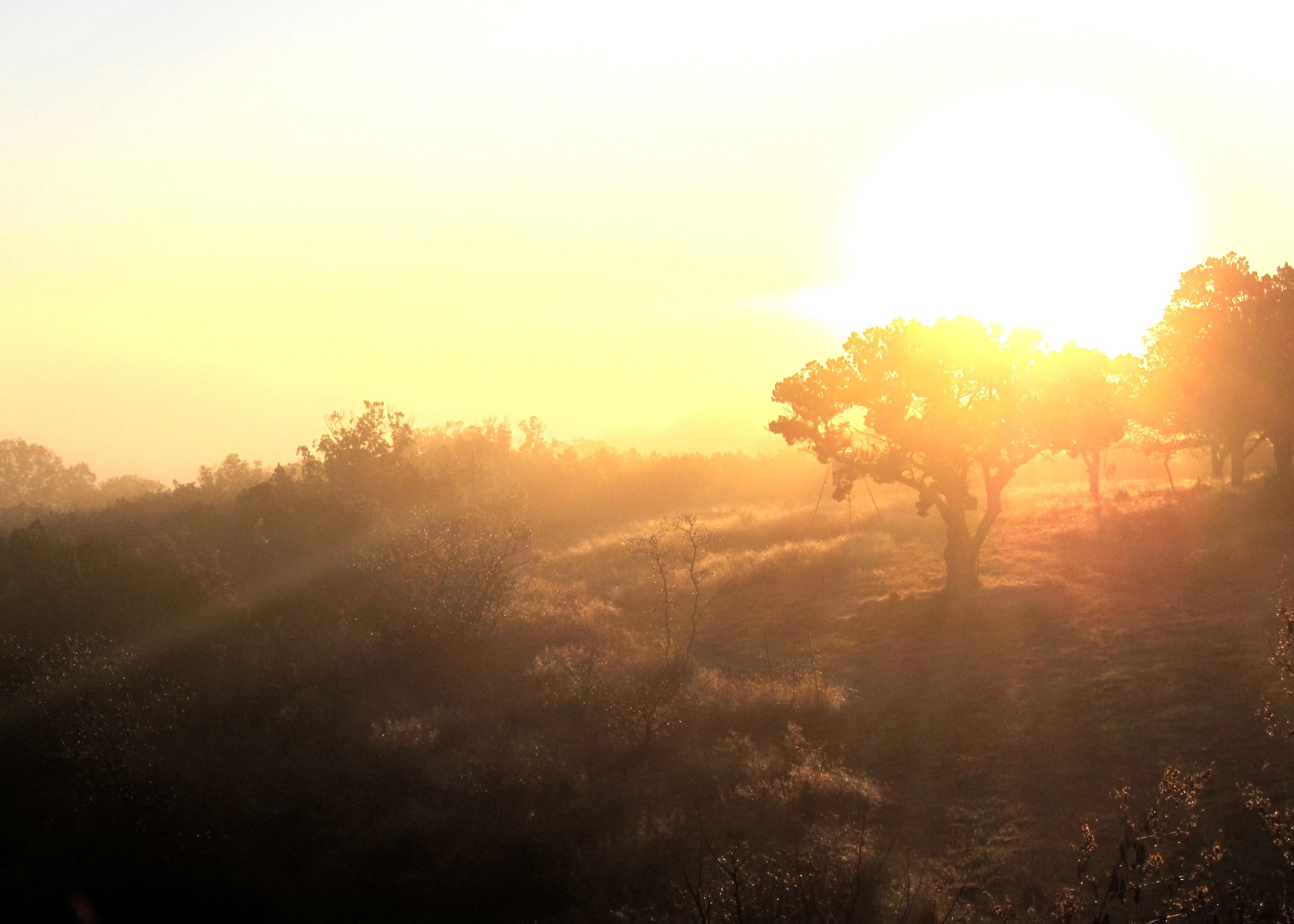 File:Hill Country Sunrise.JPG