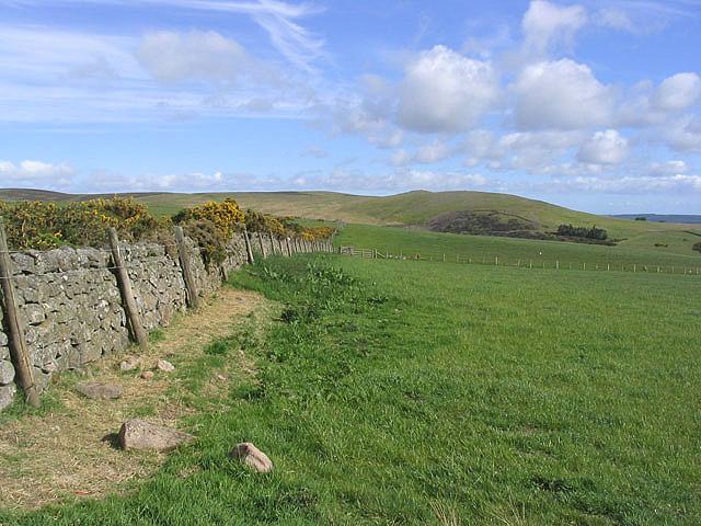 Hill farmland near Wooler - geograph.org.uk - 444979
