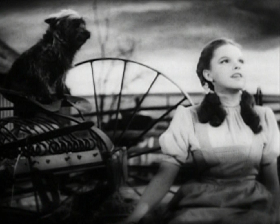 Judy_Garland_Over_the_Rainbow_2.jpg (966×773)