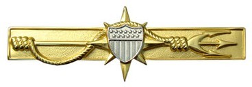 Marine Safety Insignia - Wikipedia