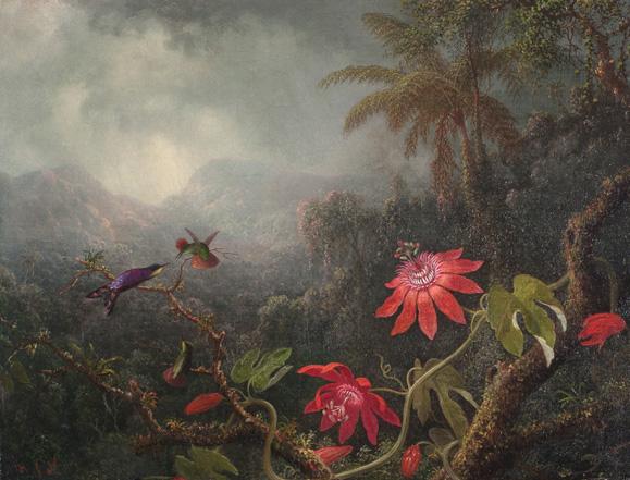 Файл: Мартин Джонсон Heade - Страсть Цветы с тремя Колибри, Сан-Антонио Музей art.jpg