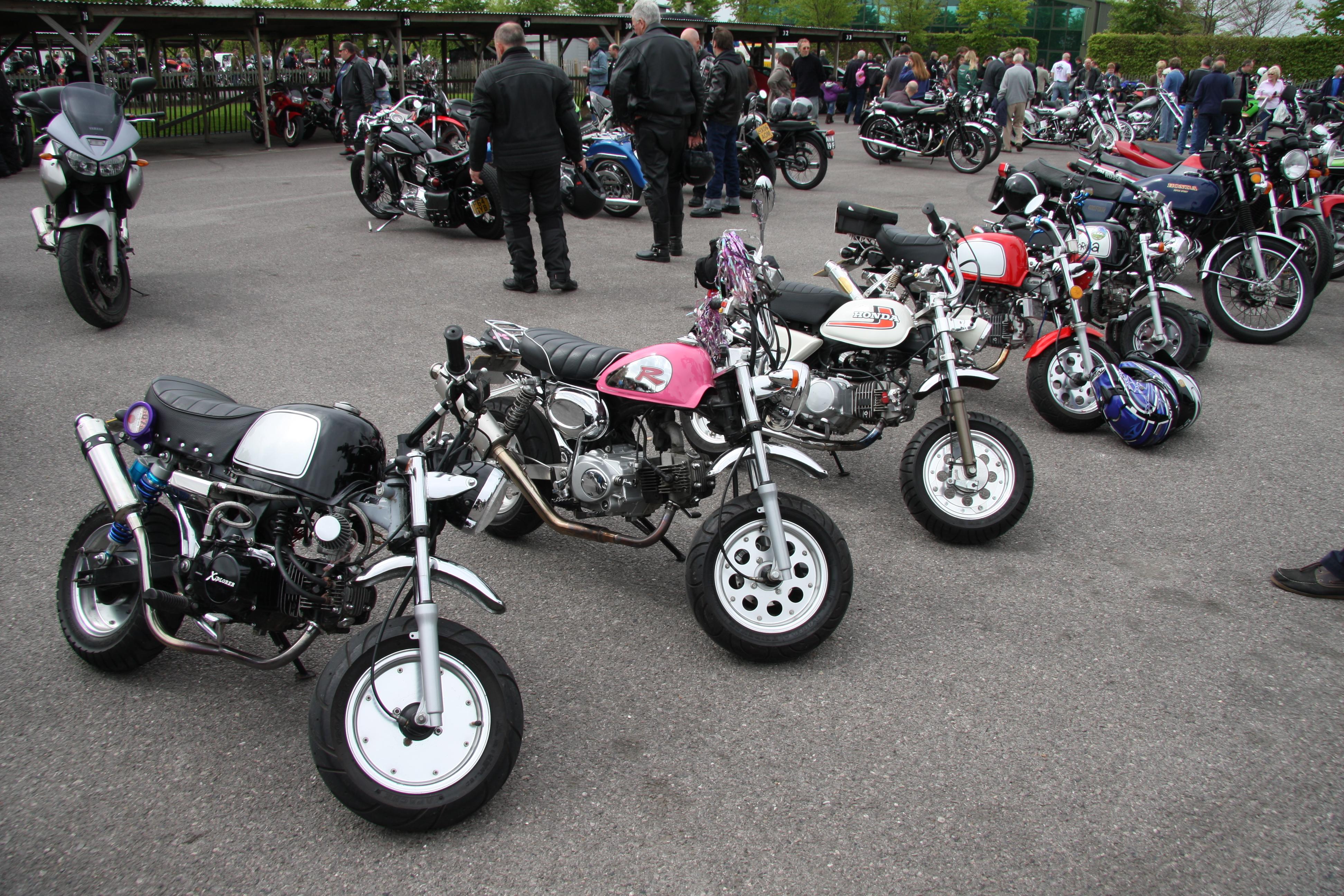 File Mini Bikes Flickr Exfordy Jpg Wikimedia Commons