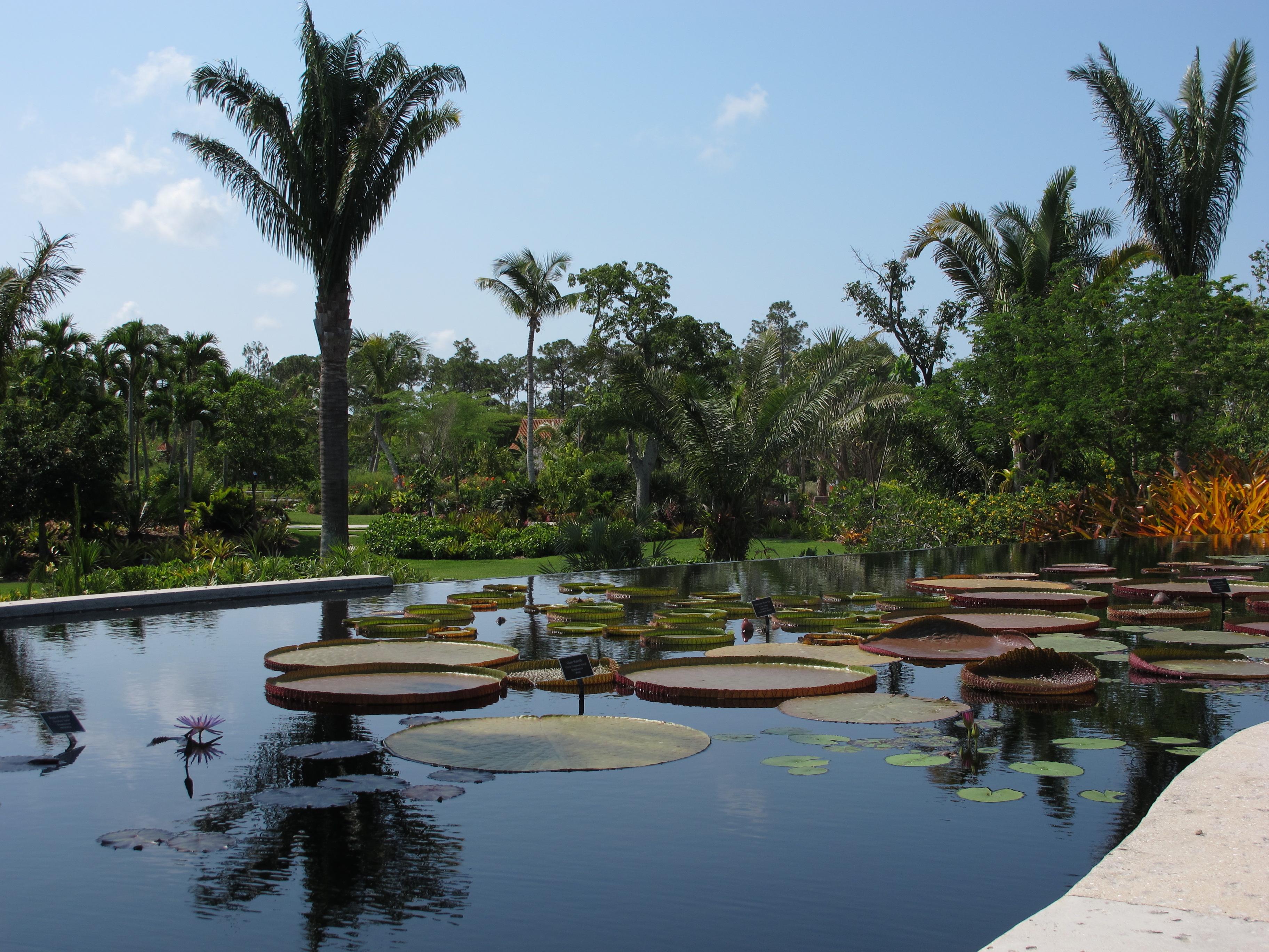 Naples Botanical Garden Wikiwand