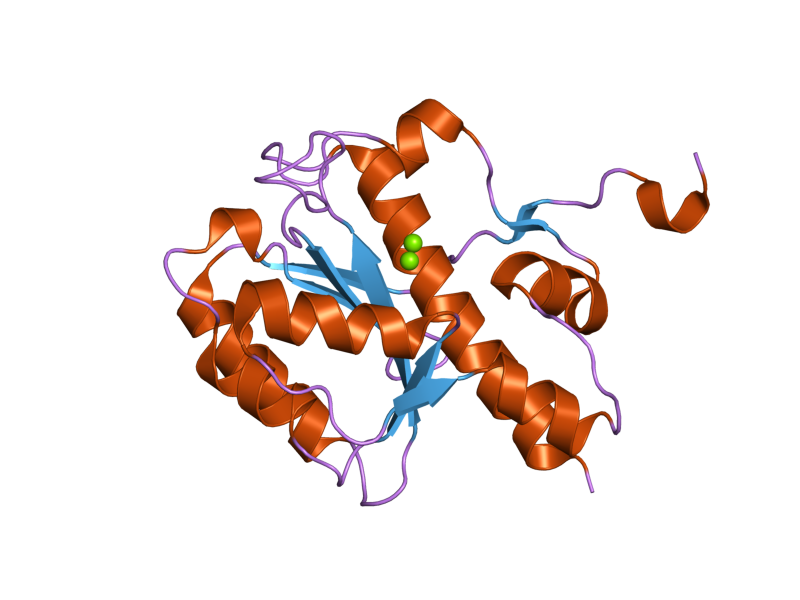 File:PDB 2fbx EBI png - Wikimedia Commons