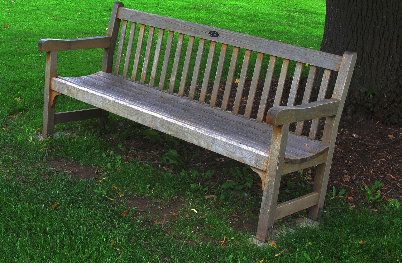 park bench dating Dating jobs buysell  shameless couple caught having sex on park bench in shocking  a shameless couple have been caught having sex on a park bench in broad .