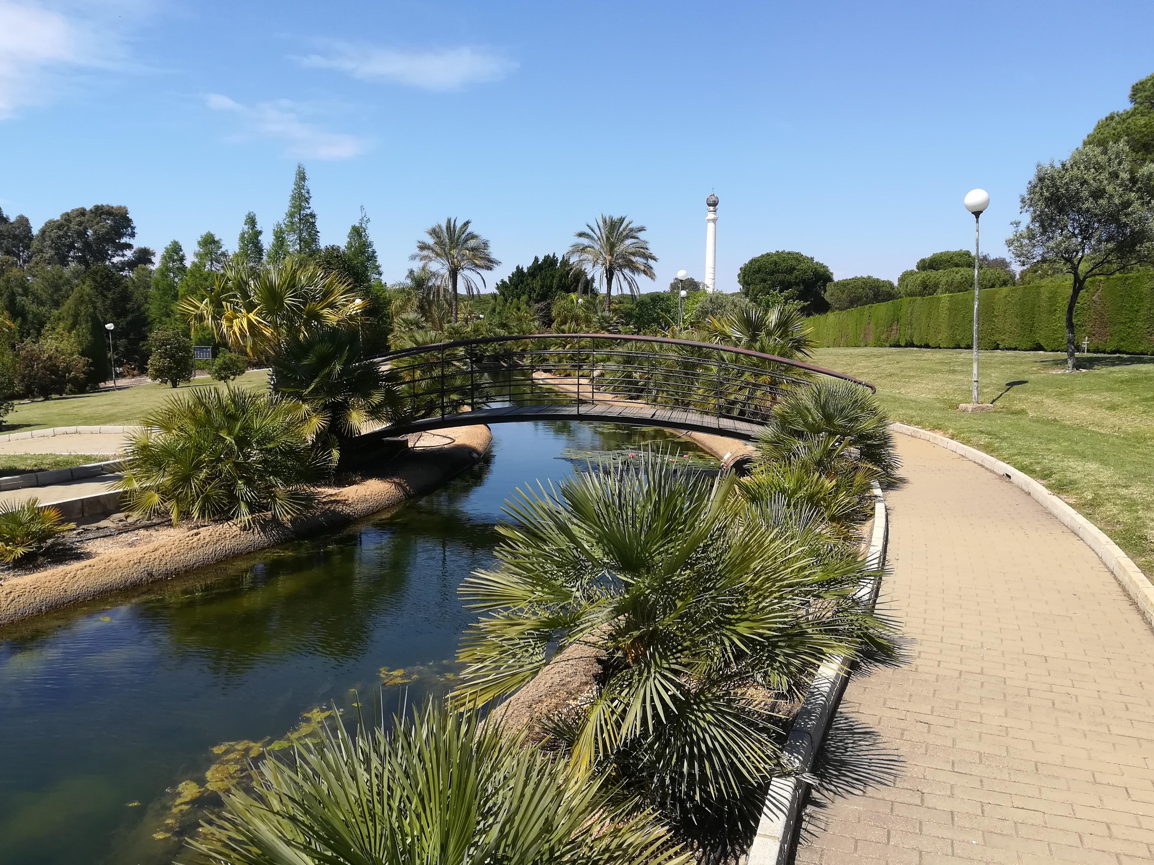 File:Parque Botánico José Celestino Mutis 08.jpg - Wikimedia ...