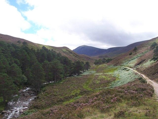 Path to Glen Einich in August - geograph.org.uk - 1315620
