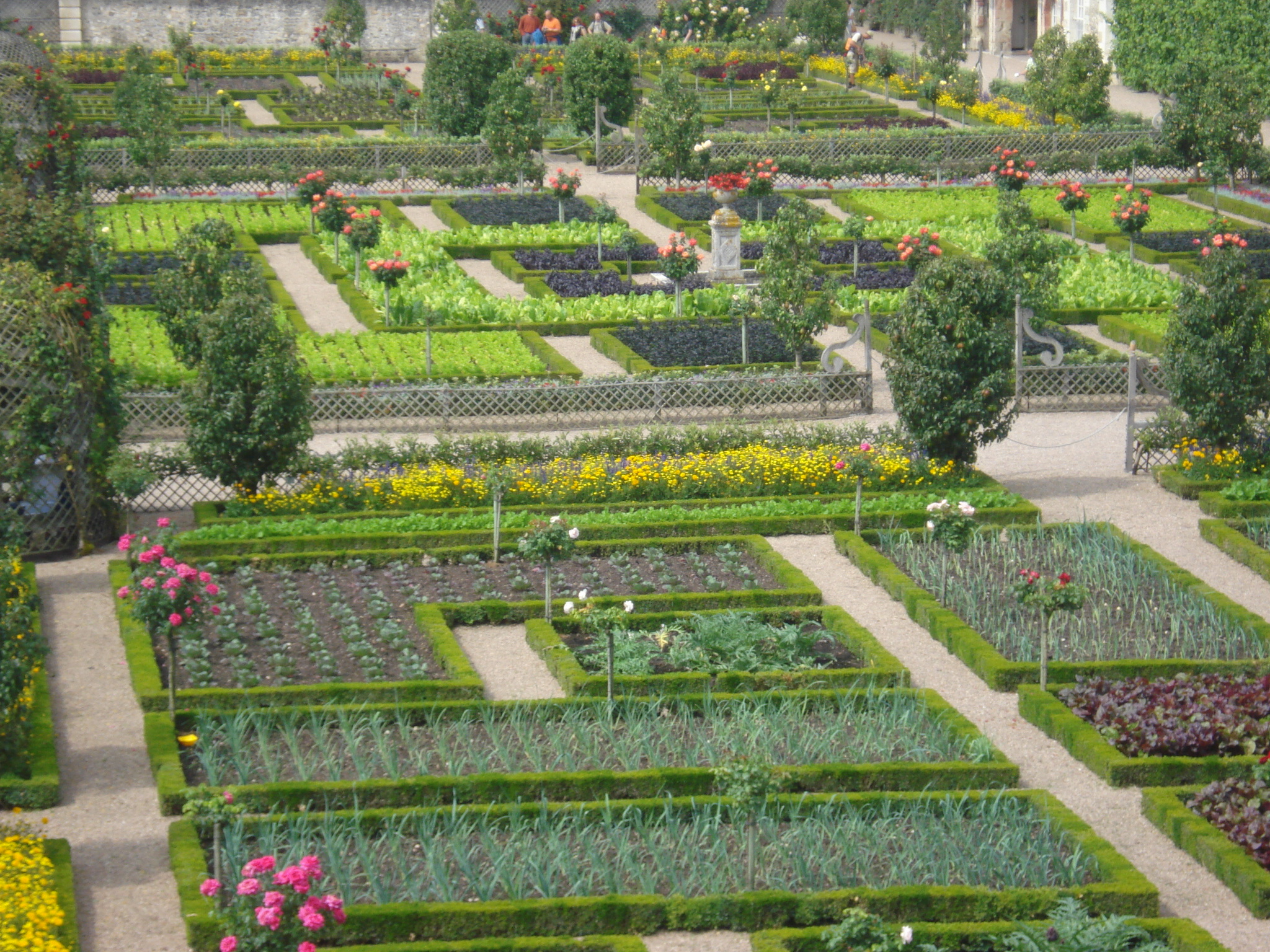 File potager d 39 ete du chateau de wikimedia - Toile de jardin triangulaire ...
