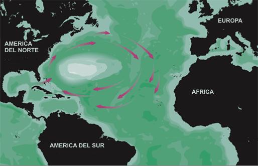 Mapa del mar de los Sargazos, con indicación de las corrientes marinas circundantes.