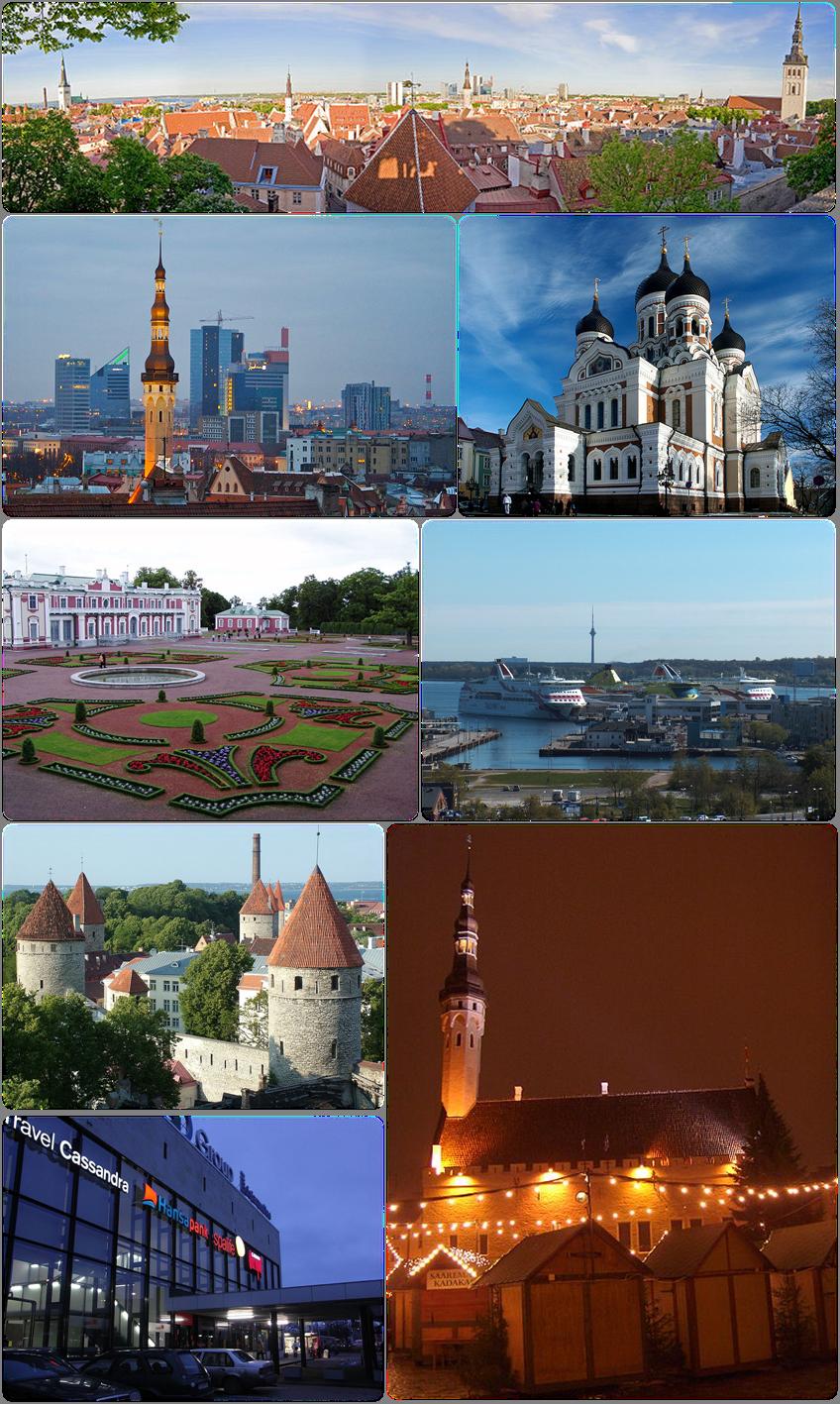 TE-Collage Tallinn.png