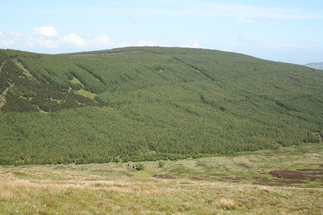 The Slate. - geograph.org.uk - 452589