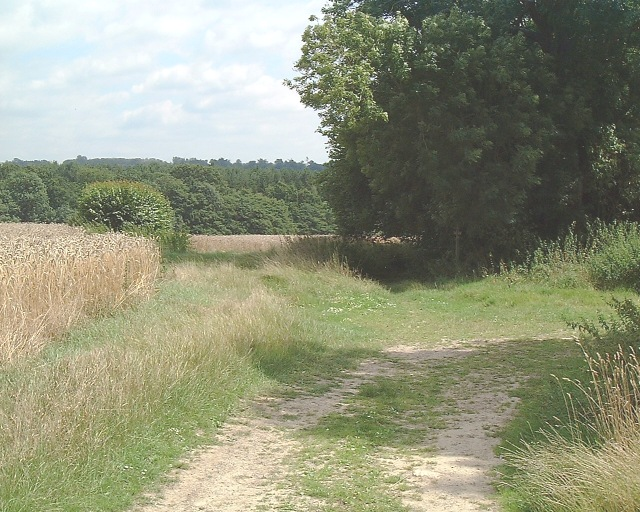 Vanguard Way - geograph.org.uk - 35011