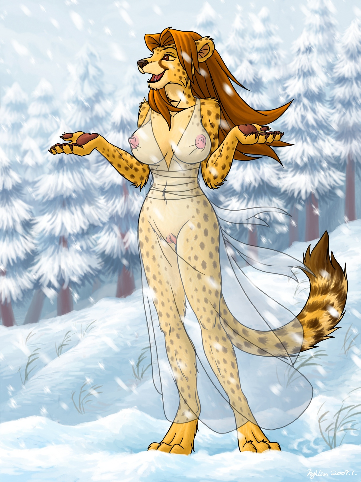 Winter Lady robe translucent