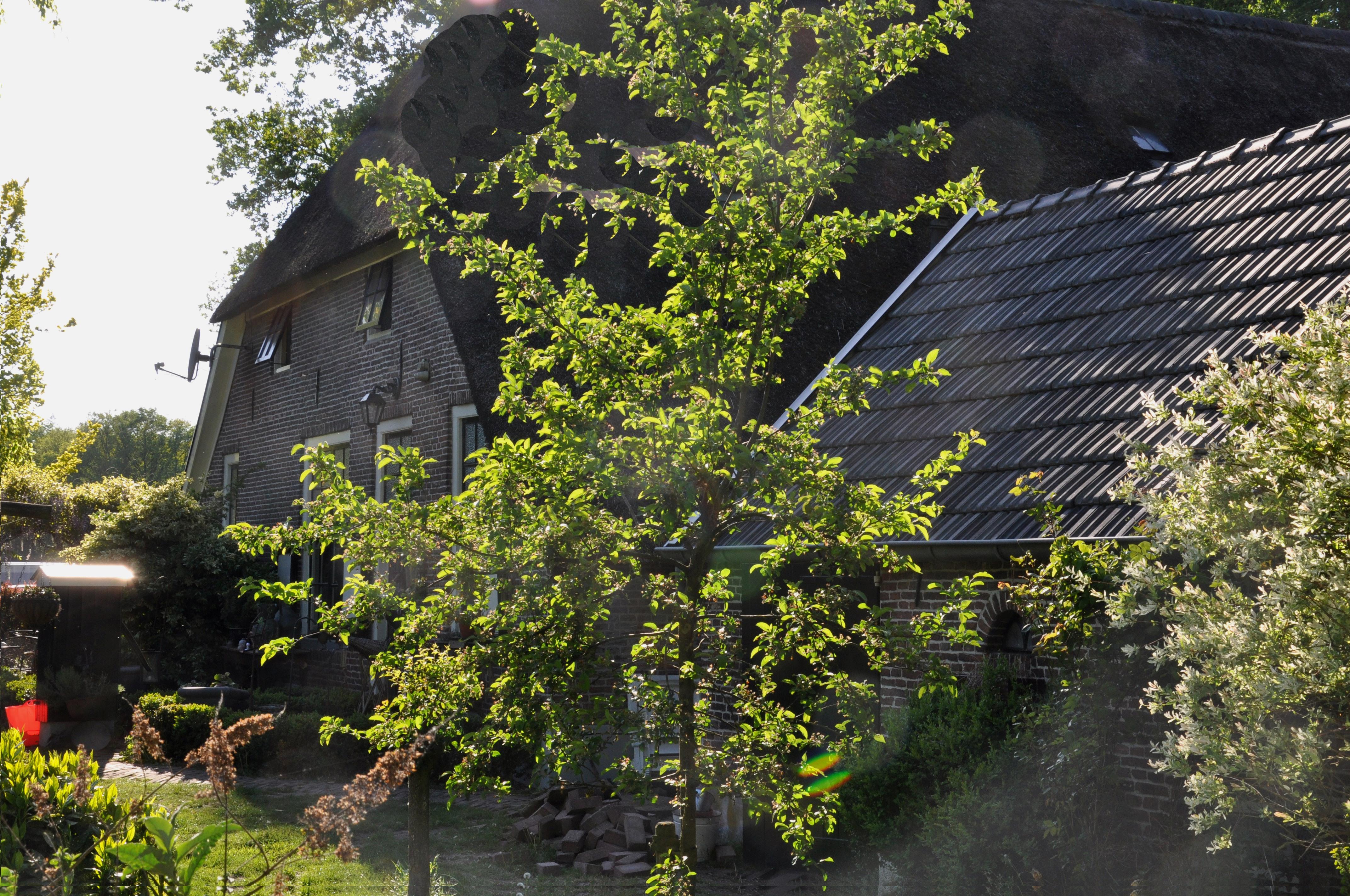 File apeldoorn rijksmonument 8170 boerderij woudhuizerweg for Boerderij te koop apeldoorn