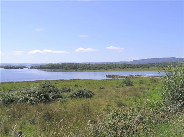 Boa Island Wikipedia