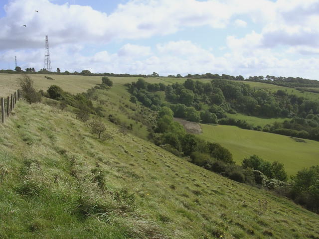 Bulbarrow Hill and Balmers Coombe Bottom - geograph.org.uk - 57825