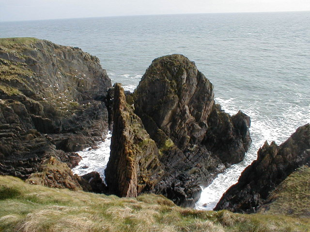 File:Burrowhead - Sea Cliffs - geograph.org.uk - 1315956.jpg