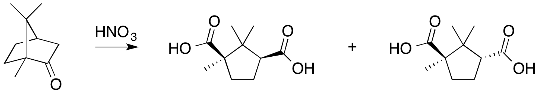 Camphor-Camphor acid