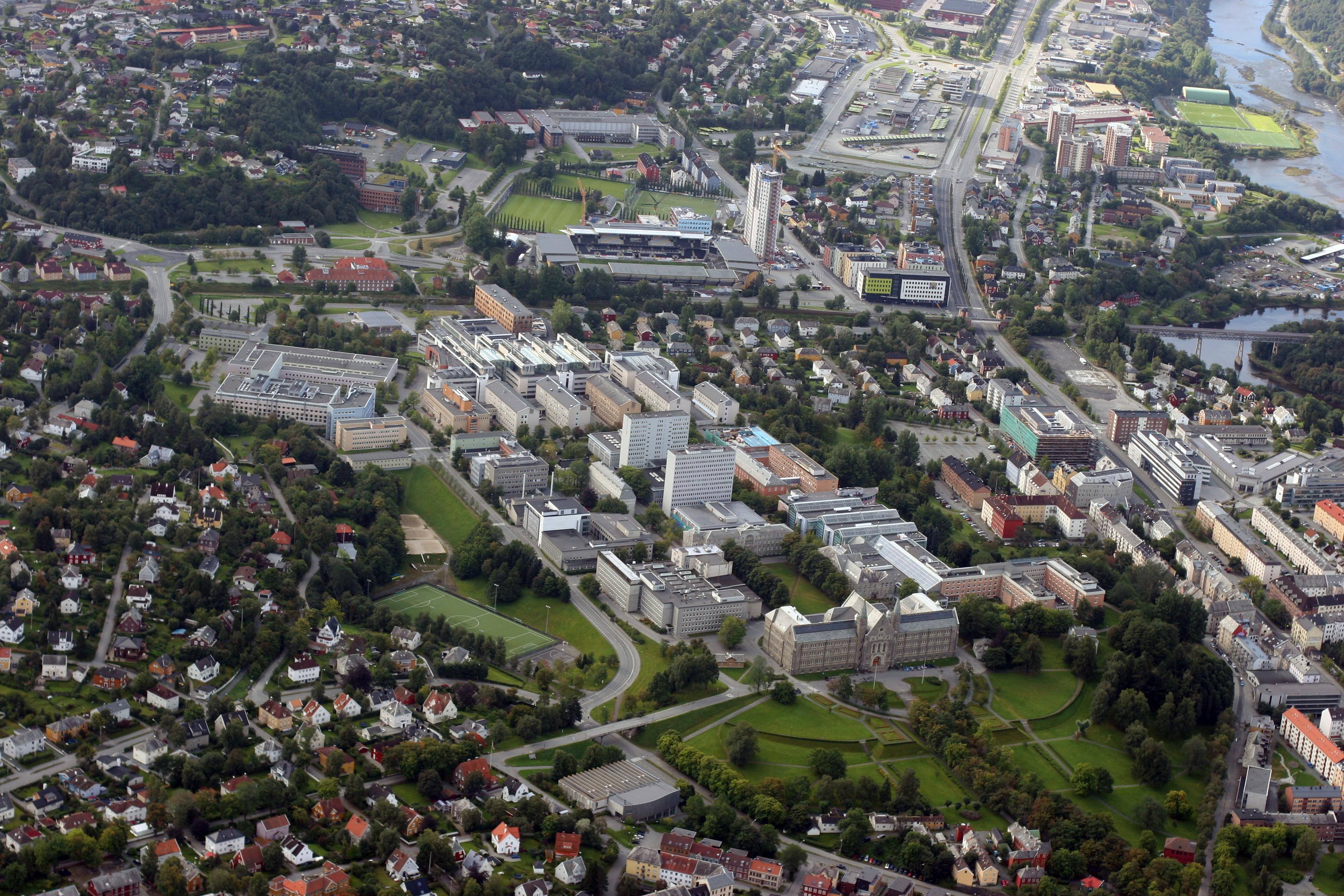 NTNUs campuser – Wikipedia