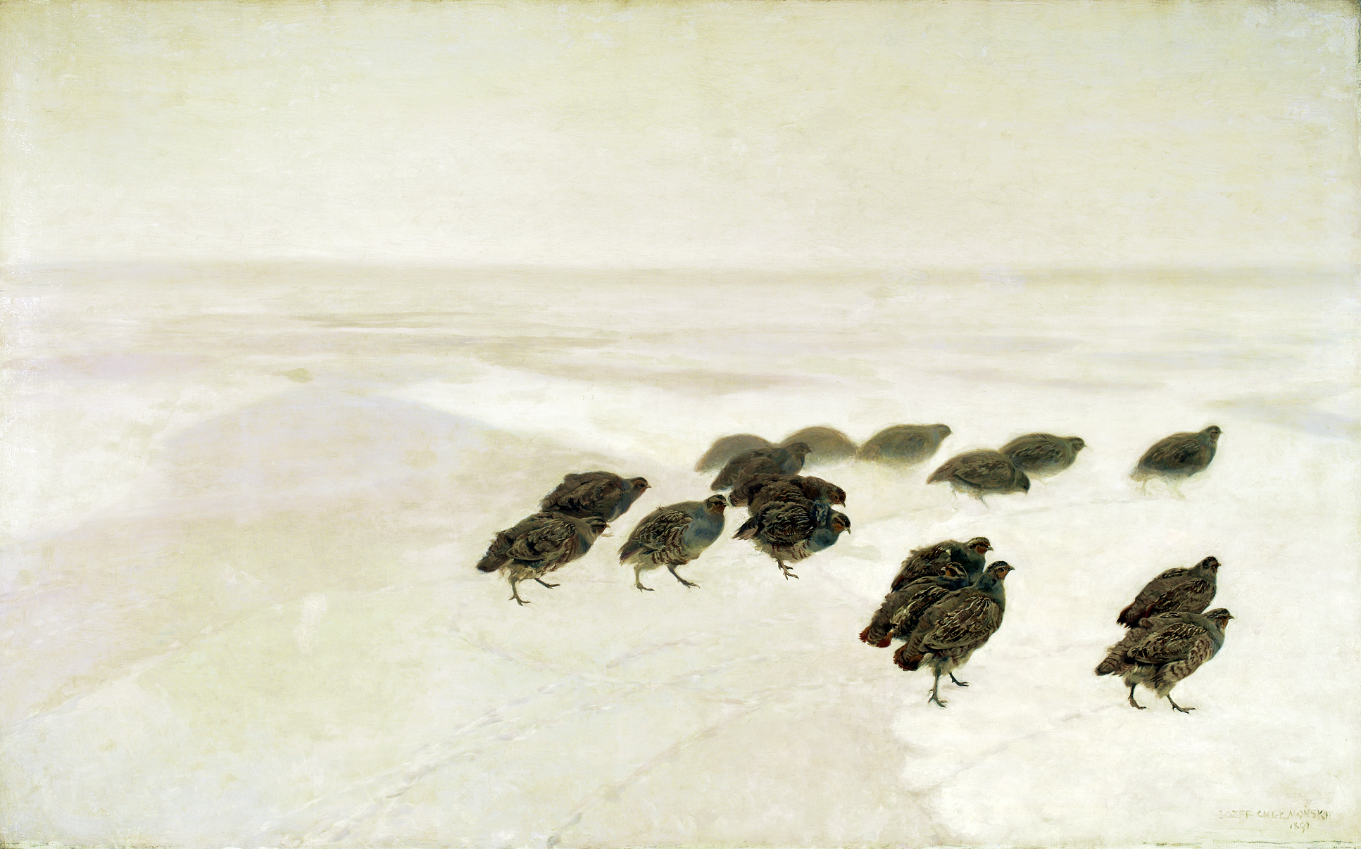 https://upload.wikimedia.org/wikipedia/commons/5/57/Che%C5%82mo%C5%84ski_Partridges_in_the_snow.png