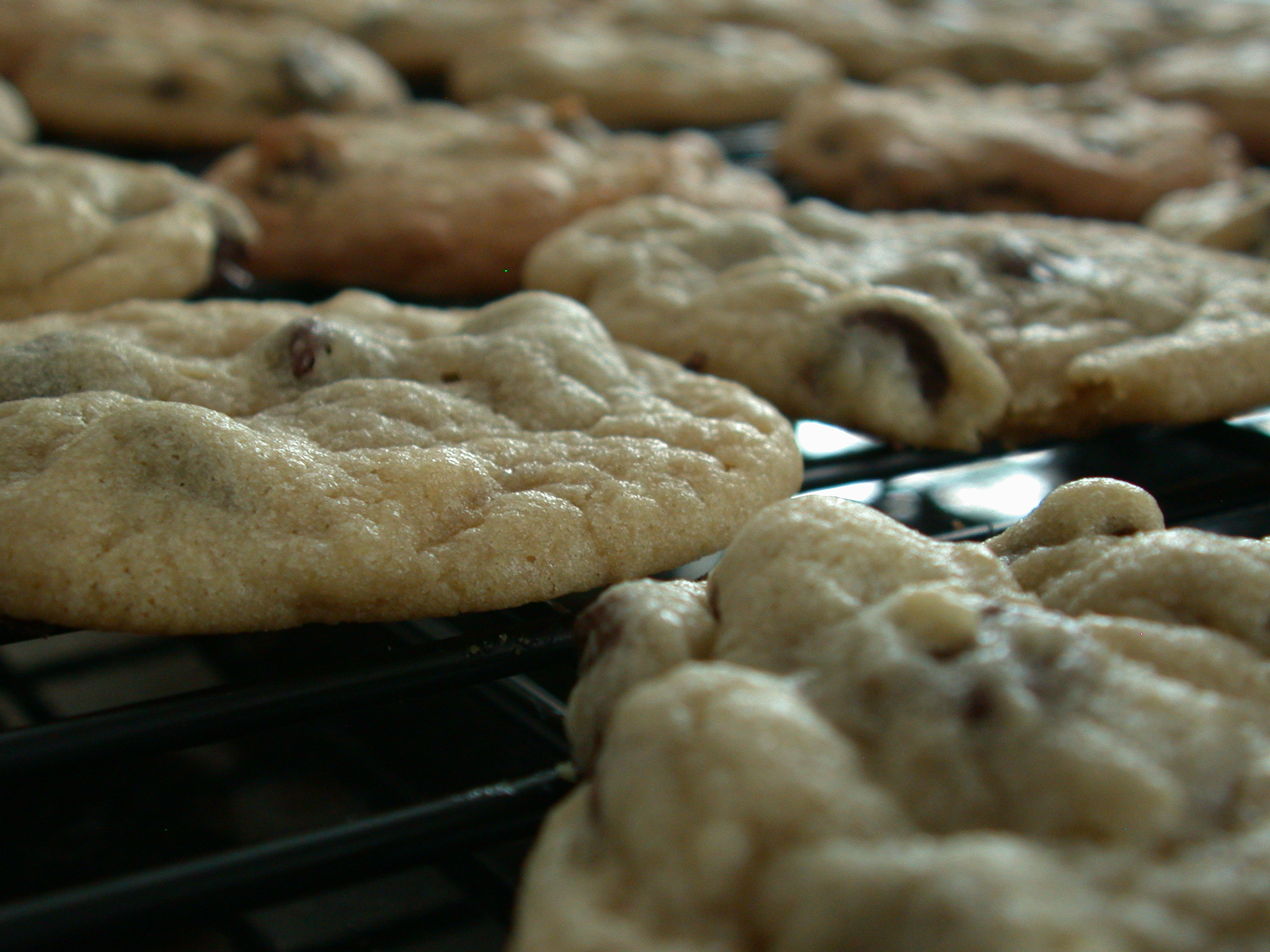 file chocolate chip cookies fresh out of the oven april