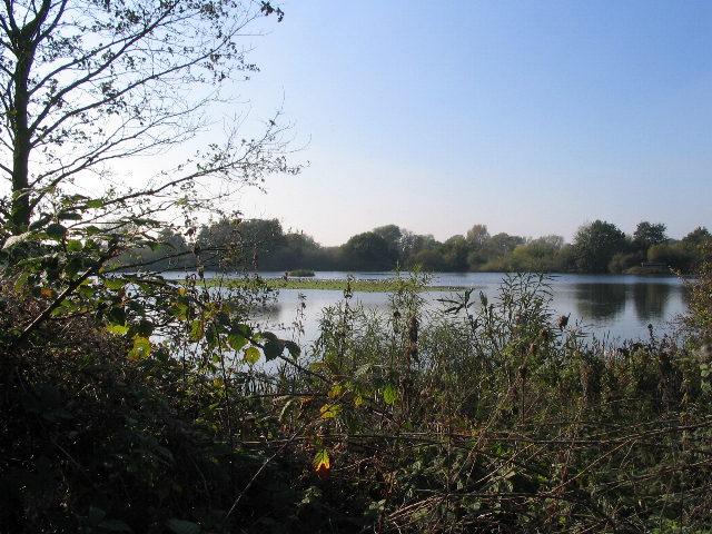 East Marsh Pool, Brandon Marsh - geograph.org.uk - 592400