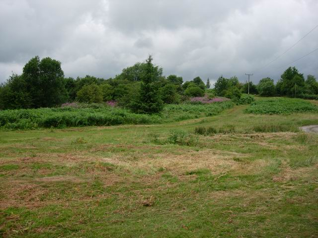 File:Ewyas Harold Common - geograph.org.uk - 208626.jpg