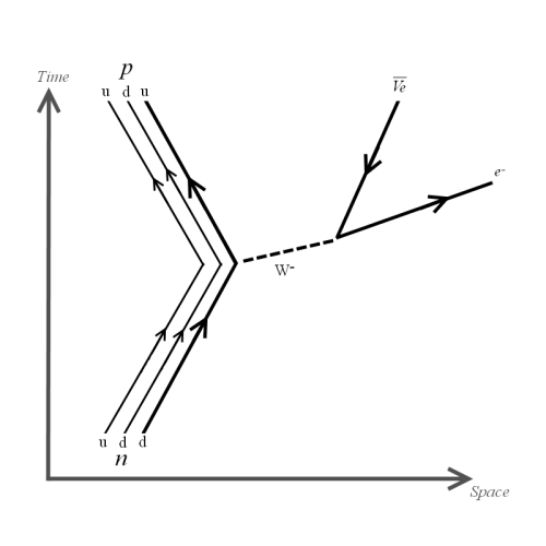 File:Feynman Diagram - Negative Beta Decay.png - Wikipedia, the ...