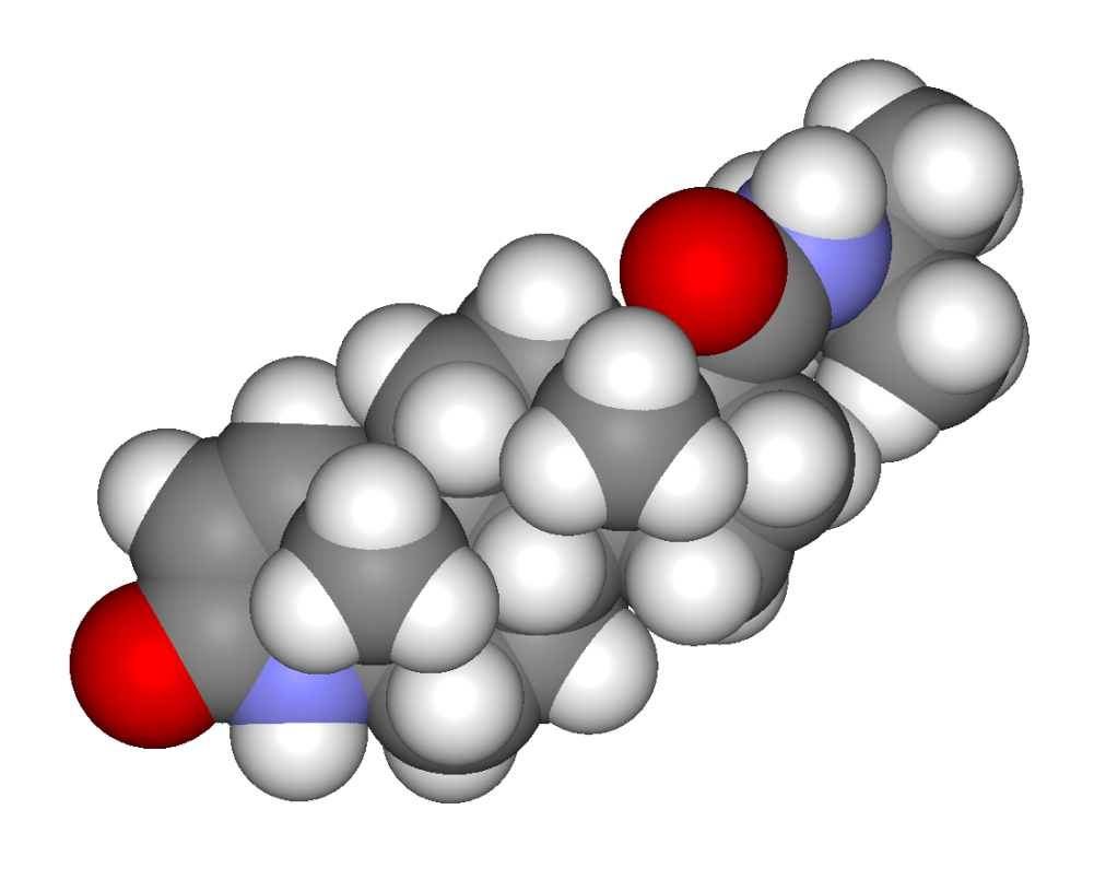 steroid 5 alpha-reductase two genes/two enzymes