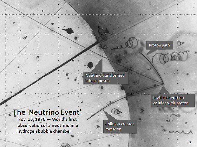 First Neutrino Event Annotation