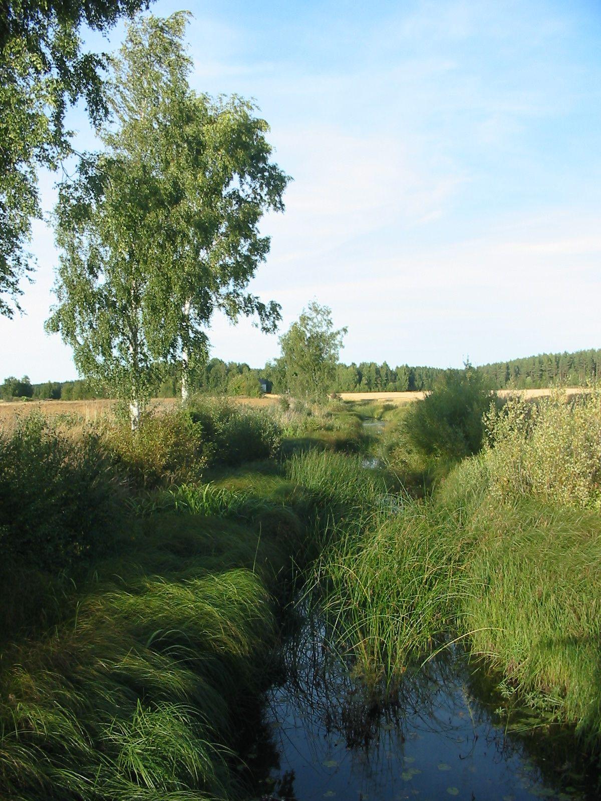 Kaljasjärvi