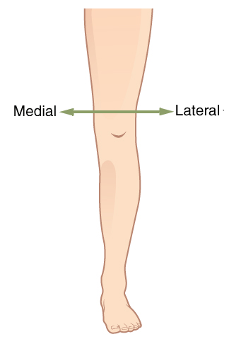 how to use lateral thigh trainer
