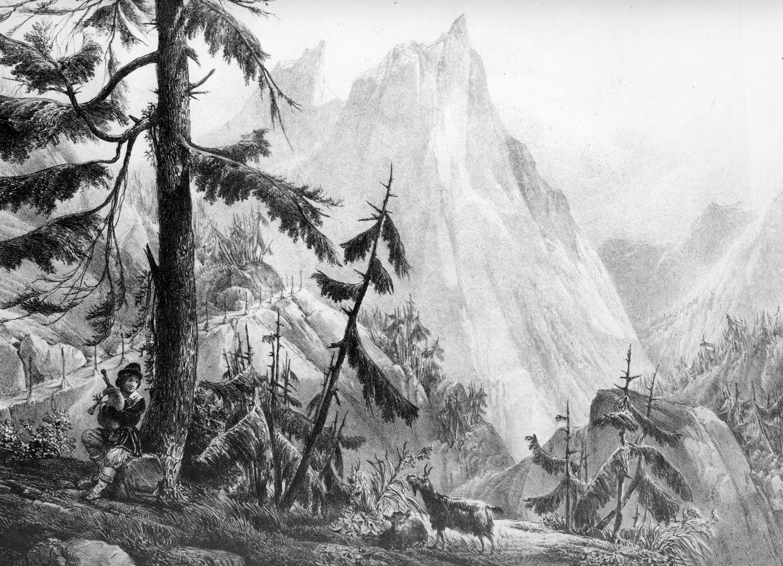 Description montagnes-du-jura