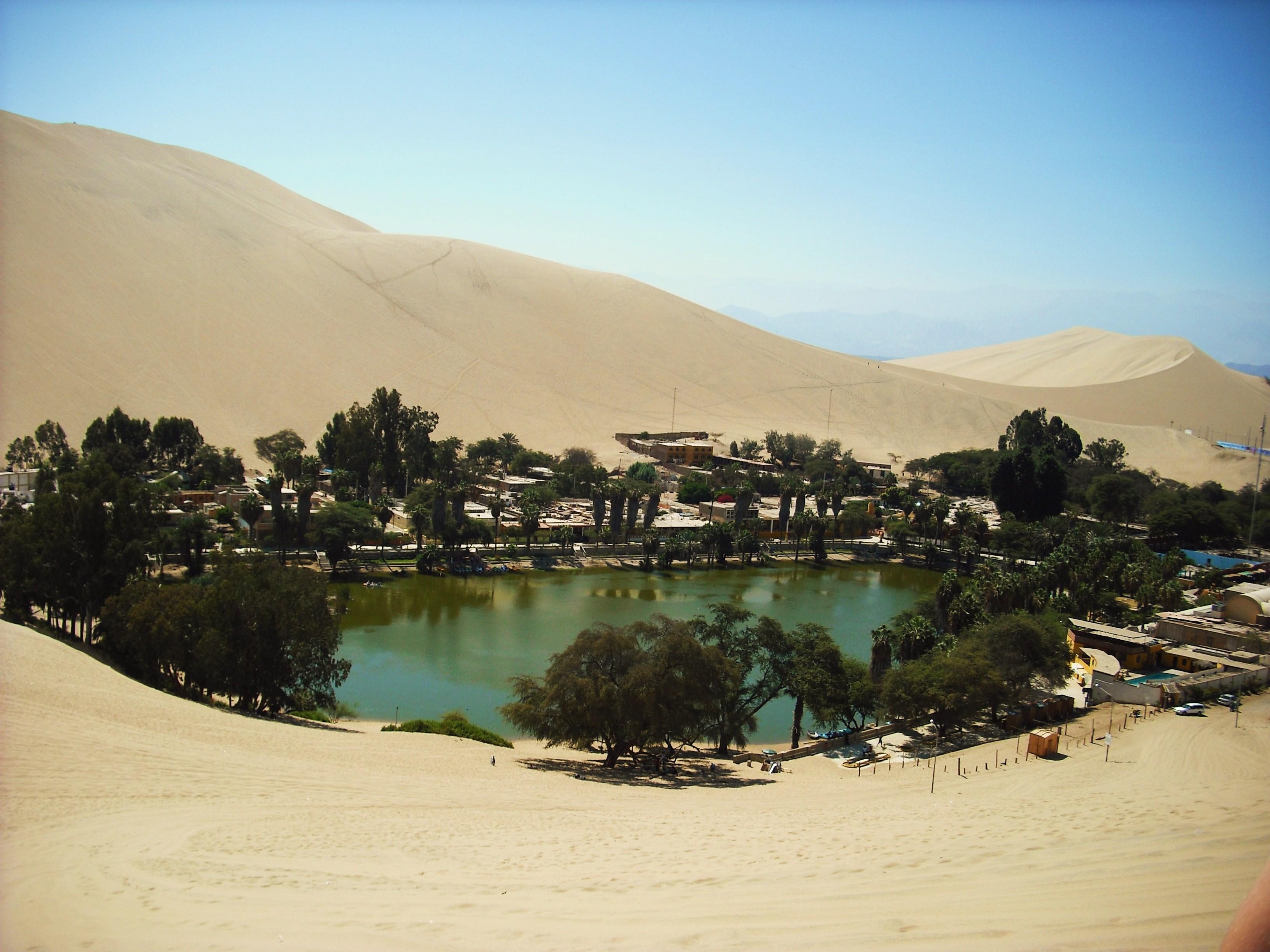 oasis de