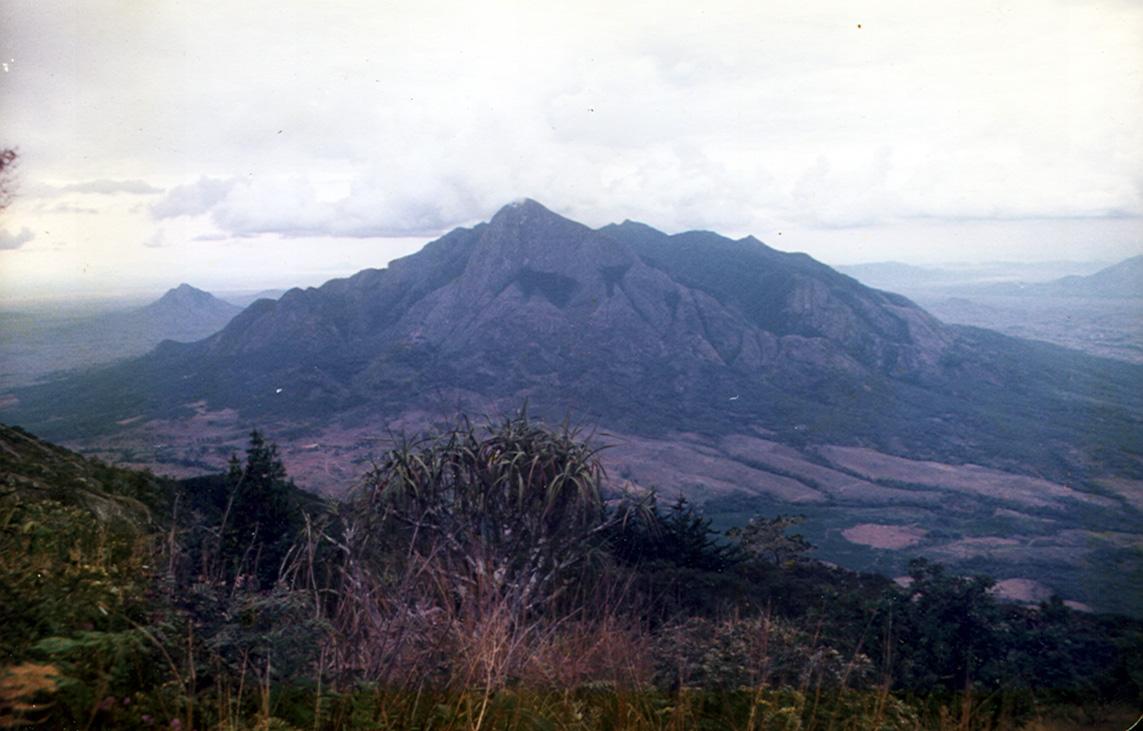 guide afrique du sud gratuit