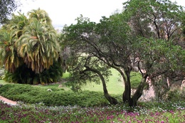 Presidio Park protected area