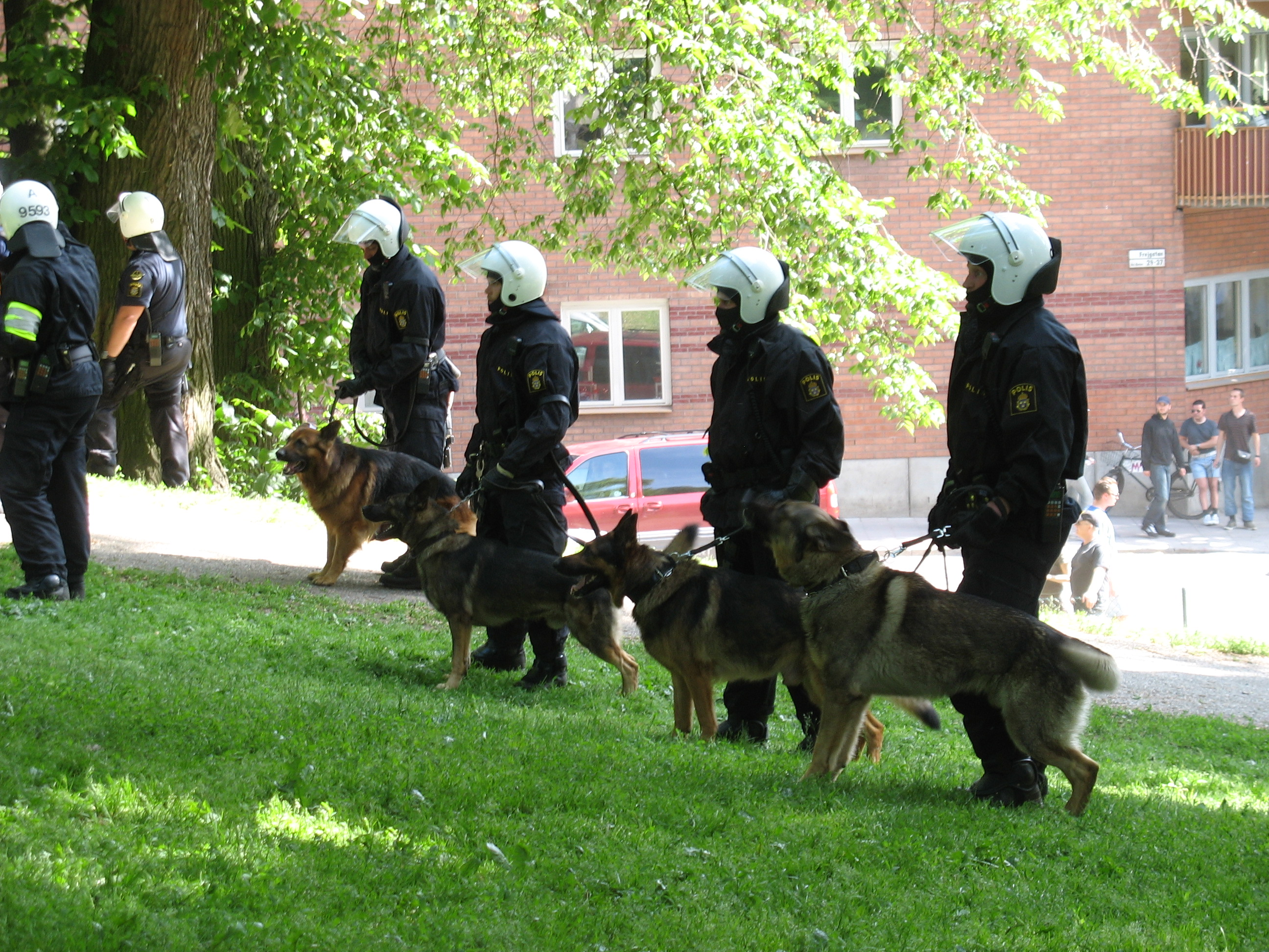Description swedish police dogs